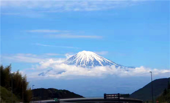 日本---本州芝樱双古都6日游(京阪)