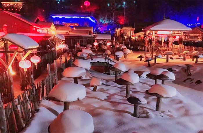 【小包团 | 3人起】哈尔滨+雪乡赏雪四日游
