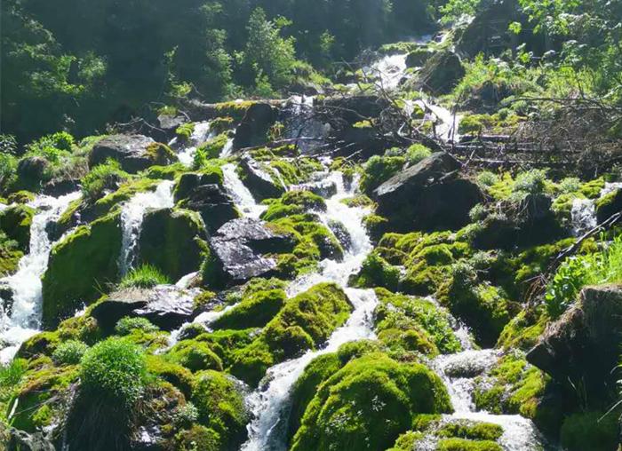 新疆天山天池景区--中国十大魅力休闲旅游湖泊