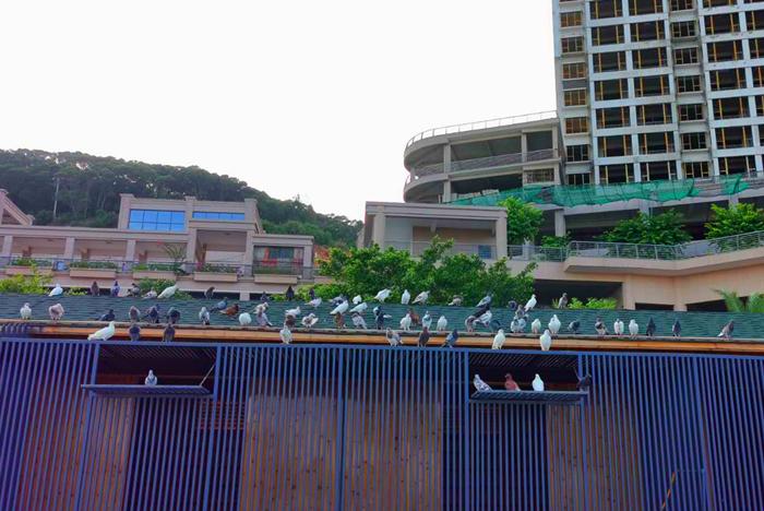 连江定海湾美景
