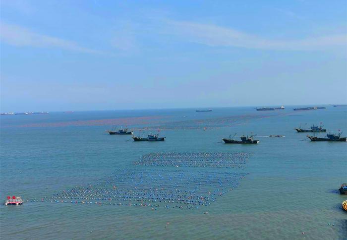 定海湾沙滩美景